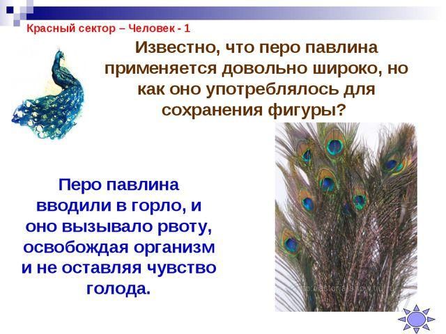 Красный сектор – Человек - 1 Известно, что перо павлина применяется довольно...