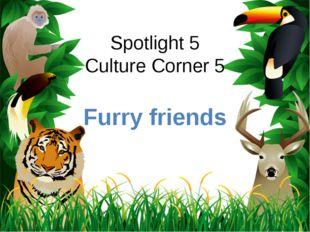 Spotlight 5 Culture Corner 5 Furry friends ProPowerPoint.ru