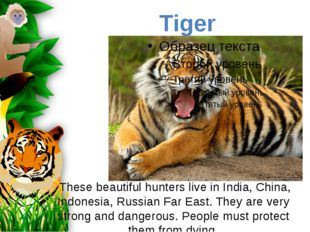 These beautiful hunters live in India, China, Indonesia, Russian Far East. T
