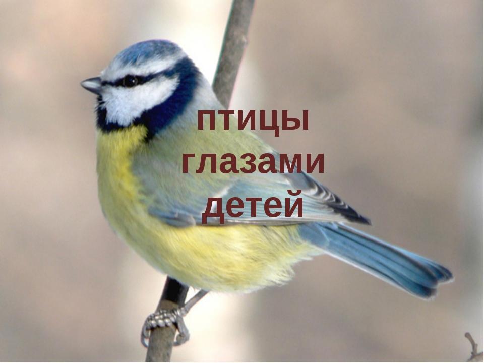 птицы глазами детей