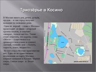 В Москве много рек, речек, ручьёв, прудов – и сам город получил название по н