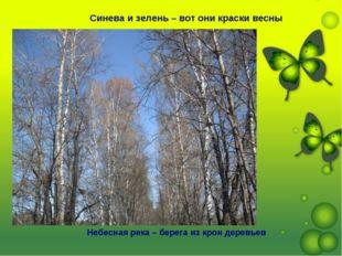 Синева и зелень – вот они краски весны Небесная река – берега из крон деревьев