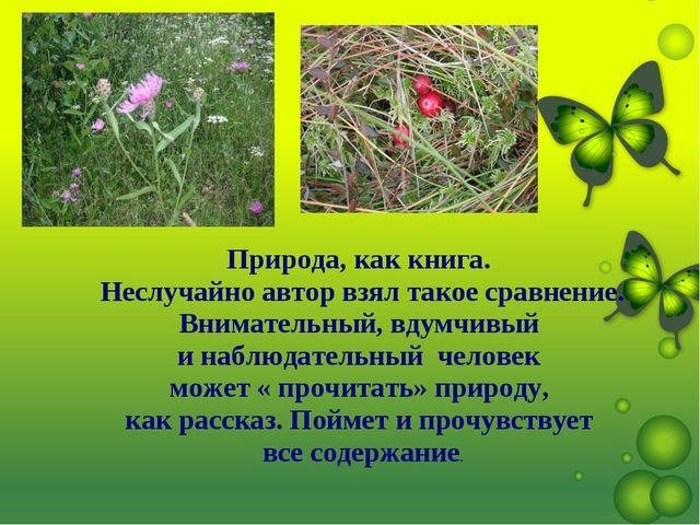 . Природа, как книга. Неслучайно автор взял такое сравнение. Внимательный, вд...