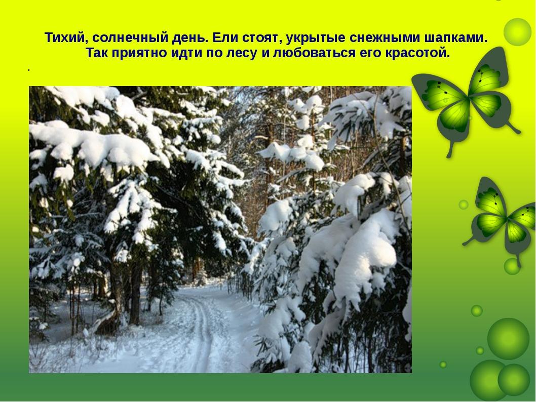 Тихий, солнечный день. Ели стоят, укрытые снежными шапками. Так приятно идти...