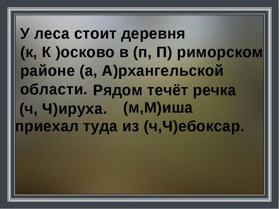 У леса стоит деревня (к, К )осково в (п, П) риморском районе (а, А)рхангельск...