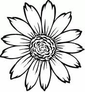https://im1-tub-ru.yandex.net/i?id=d264899baef673ba172bb29be8cb0013&n=33&h=190&w=176
