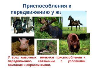 Приспособления к передвижению у животных У всех животных имеются приспособлен