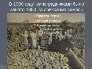 В 1980 году виноградниками было занято 1680 га совхозных земель