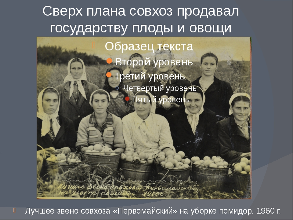 Сверх плана совхоз продавал государству плоды и овощи Лучшее звено совхоза «П...