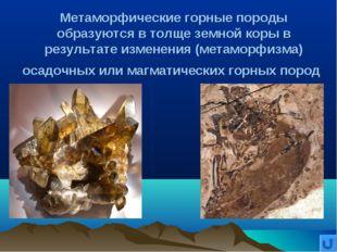 Метаморфические горные породы образуются в толще земной коры в результате изм
