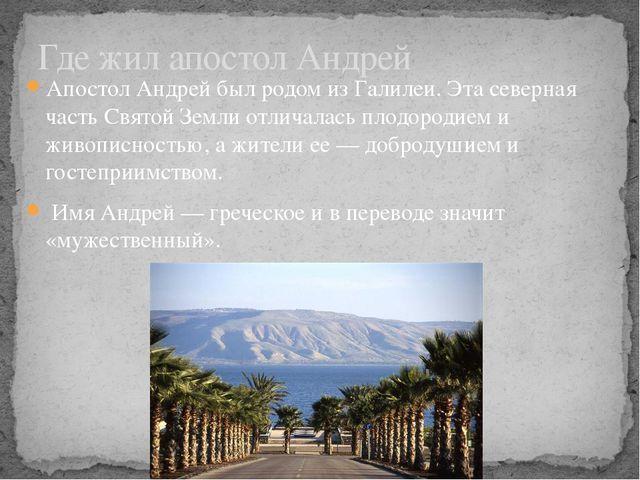Апостол Андрей был родом из Галилеи. Эта северная часть Святой Земли отличала...