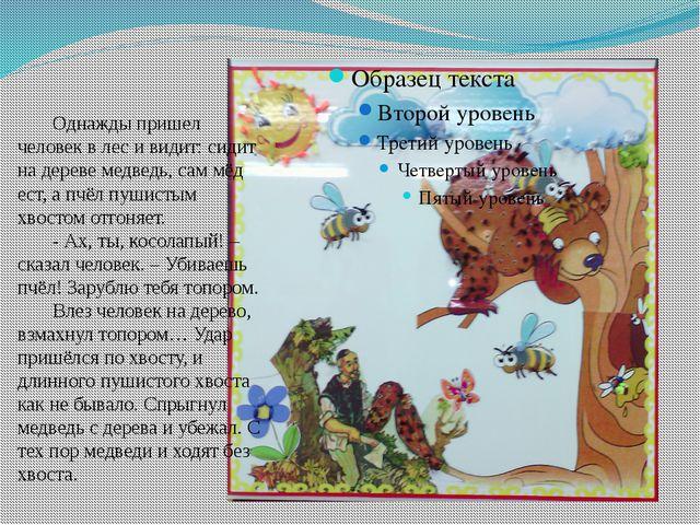 Однажды пришел человек в лес и видит: сидит на дереве медведь, сам мёд ест,...