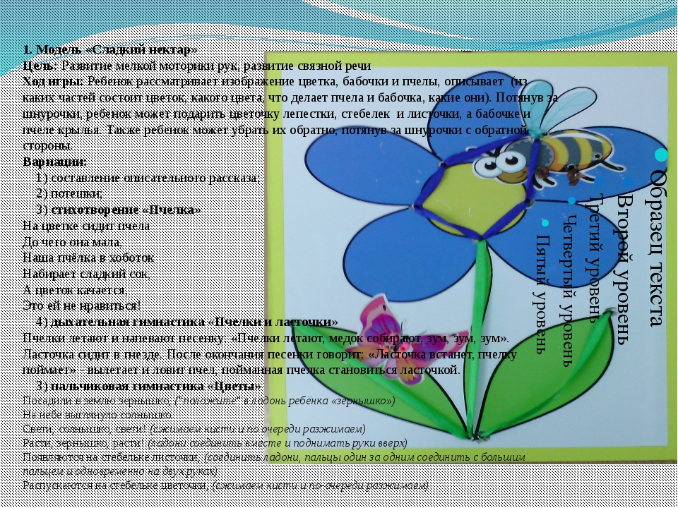 1. Модель «Сладкий нектар» Цель: Развитие мелкой моторики рук, развитие связн...
