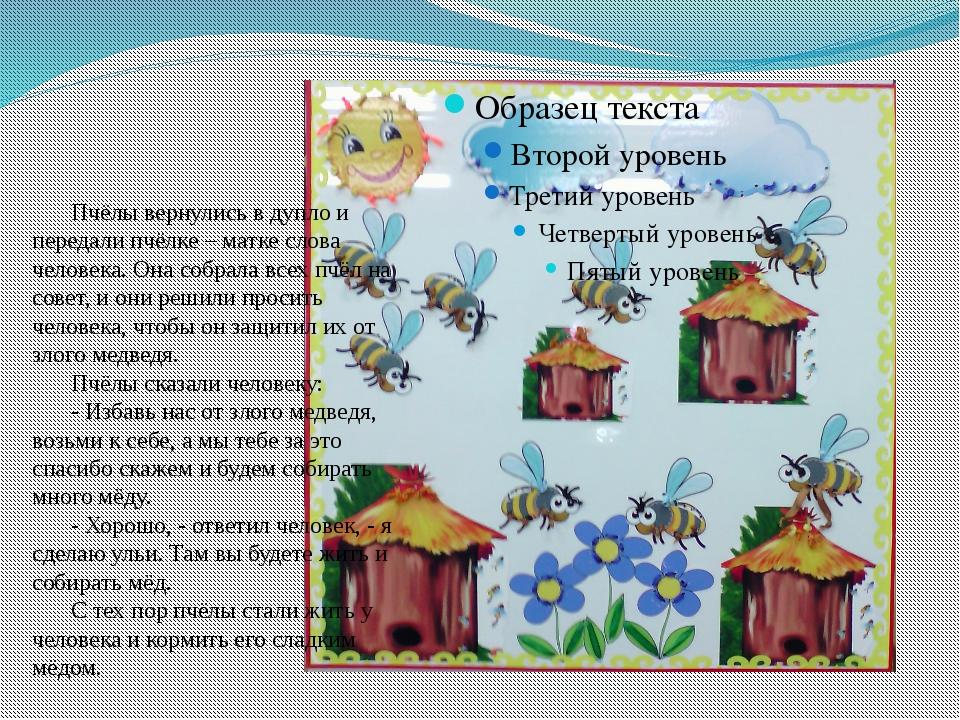 Пчёлы вернулись в дупло и передали пчёлке – матке слова человека. Она собрал...