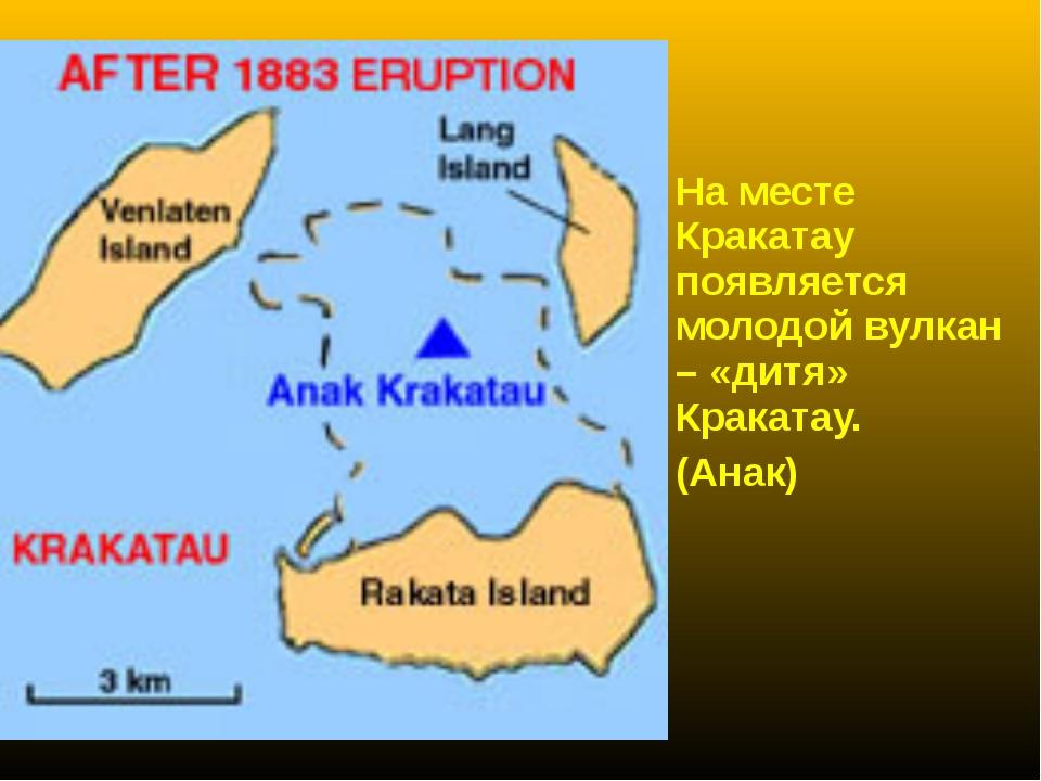 На месте Кракатау появляется молодой вулкан – «дитя» Кракатау. (Анак)