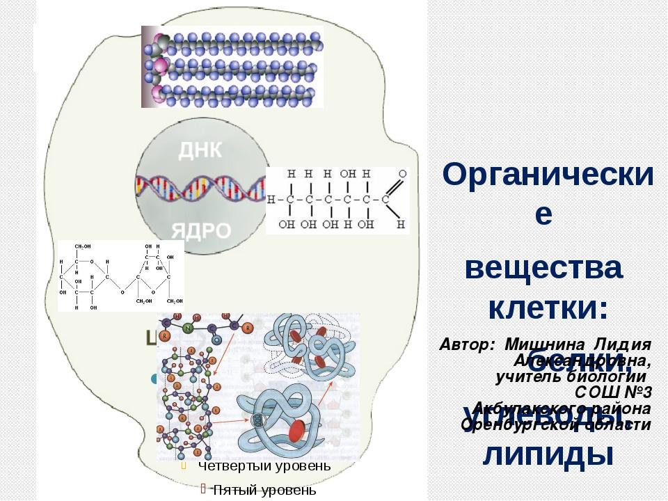 орг Органические вещества клетки: белки, углеводы, липиды Автор: Мишнина Лид...