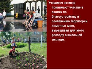 Учащиеся активно принимают участие в акциях по благоустройству и озеленению т