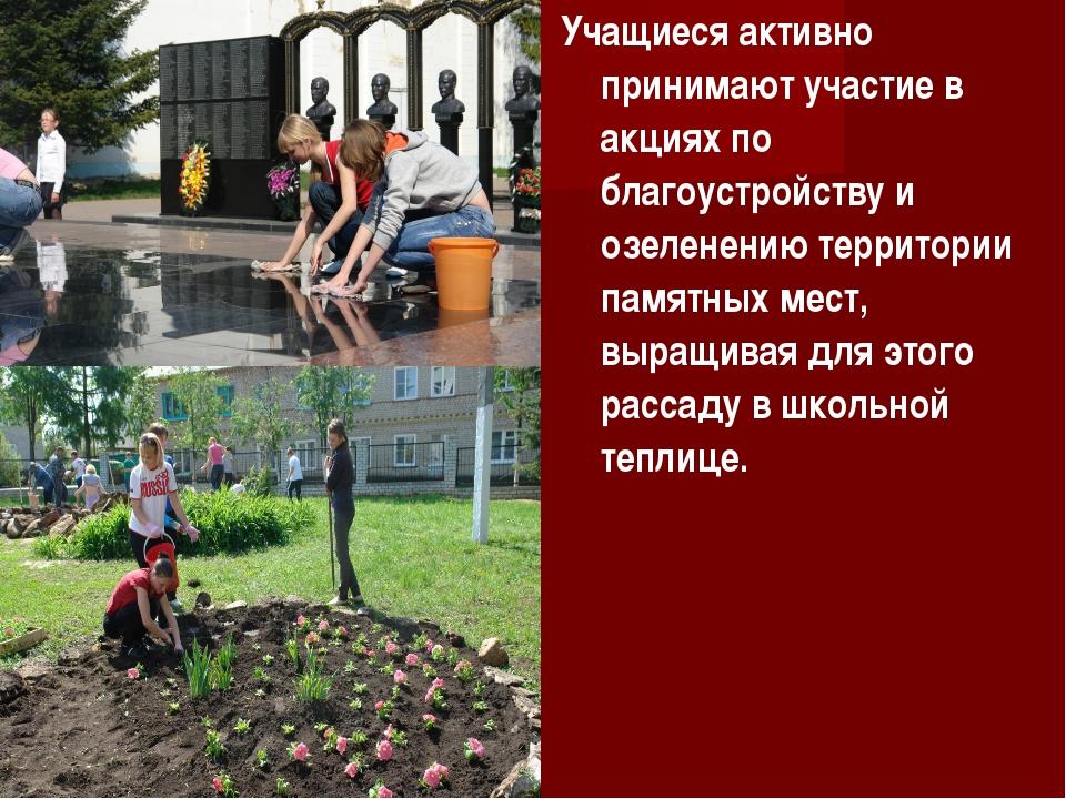 Учащиеся активно принимают участие в акциях по благоустройству и озеленению т...