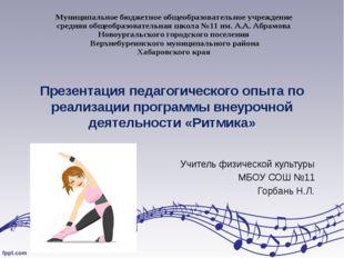 Презентация педагогического опыта по реализации программы внеурочной деятельн