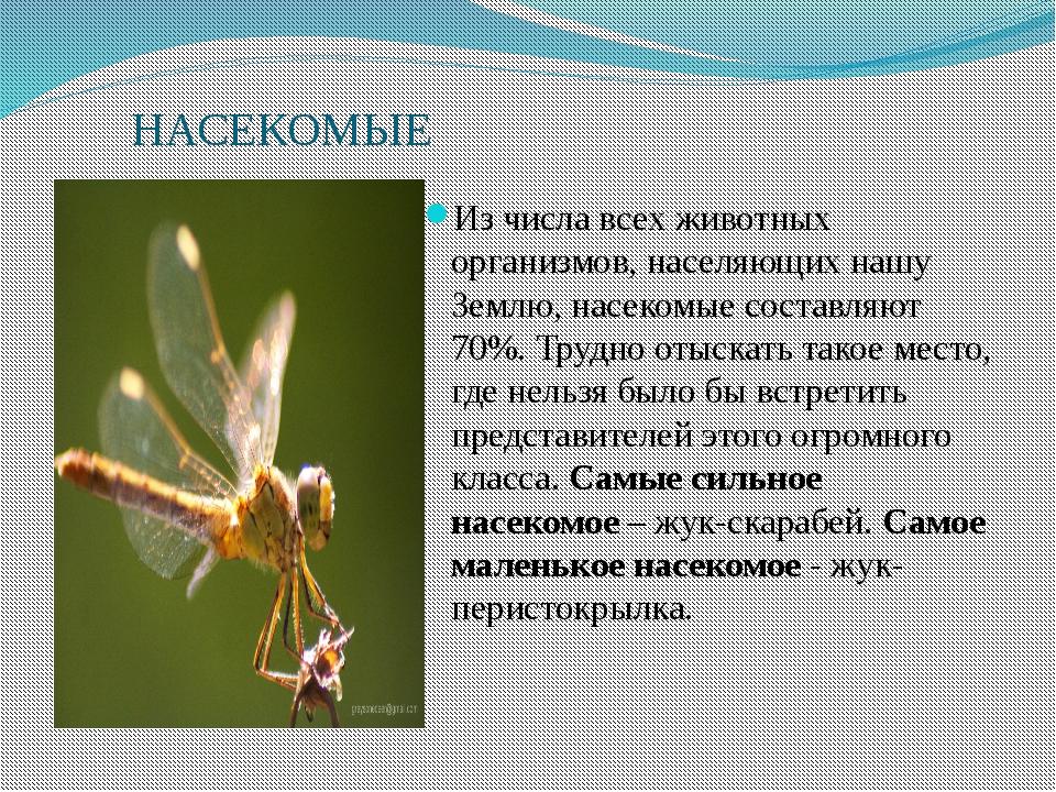 НАСЕКОМЫЕ Из числа всех животных организмов, населяющих нашу Землю, насекомы...