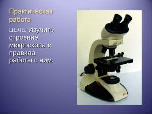 ЦЕЛЬ: Изучить строение микроскопа и правила работы с ним.