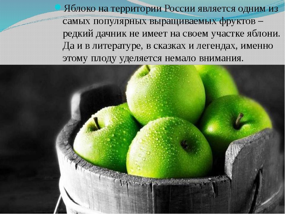 Яблоко на территории России является одним из самых популярных выращиваемых...