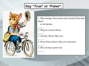 """Say """"True"""" or """"False"""". 1. That evening, Town mouse and Country Mose have dinn"""