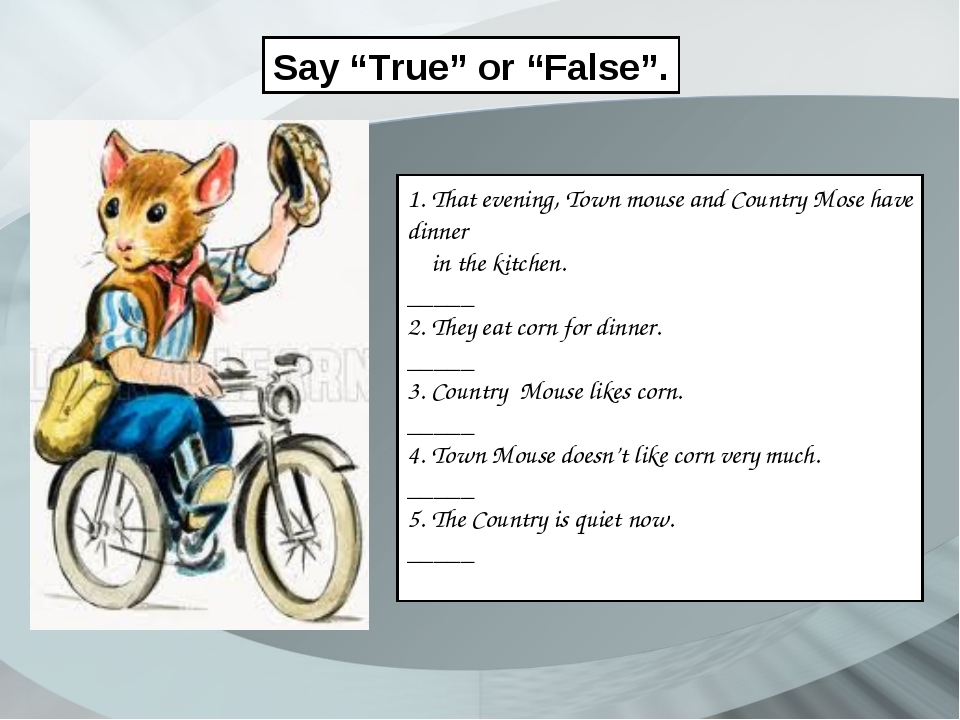 """Say """"True"""" or """"False"""". 1. That evening, Town mouse and Country Mose have dinn..."""