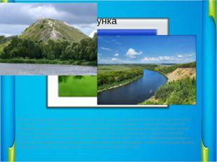 Самой большой водной артерией области является Дон. Его длина 1870 км. На св