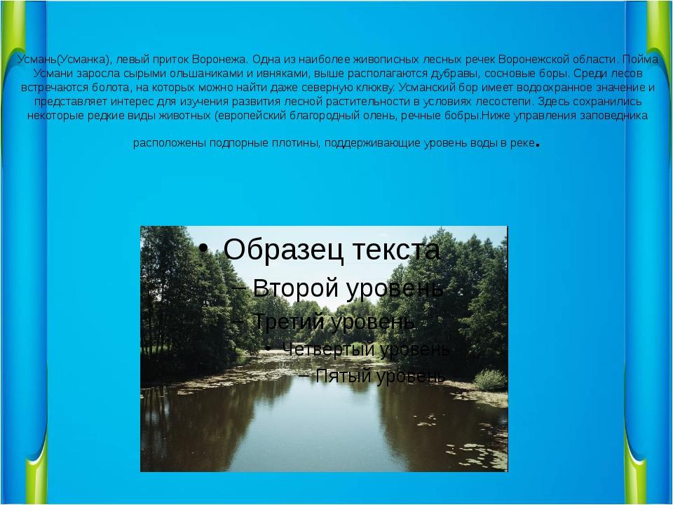 Усмань(Усманка), левый приток Воронежа. Одна из наиболее живописных лесных ре...