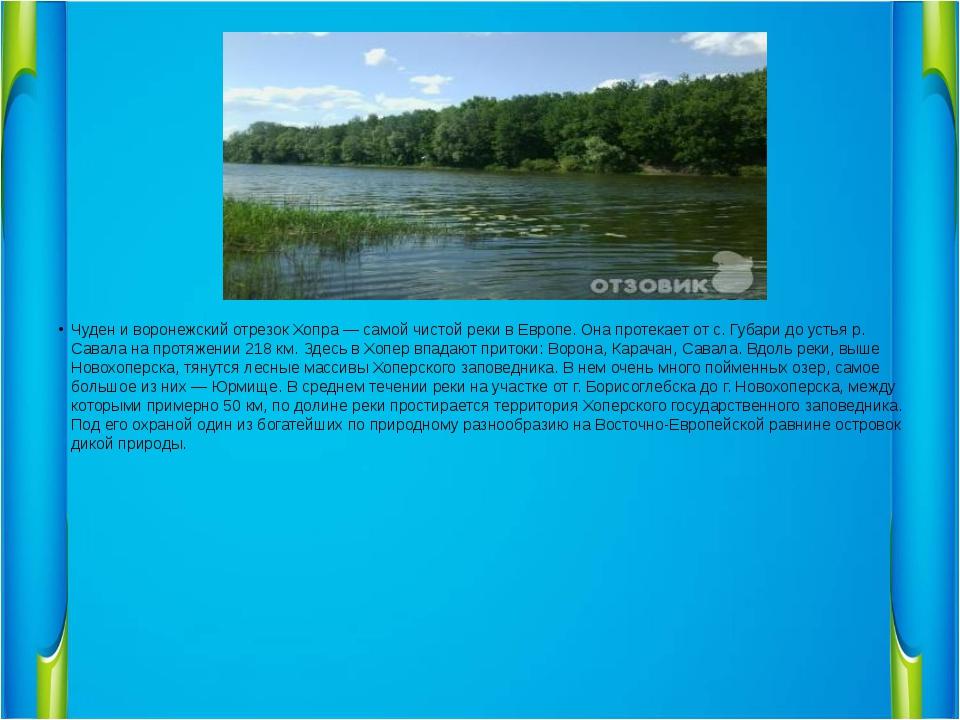 Чуден и воронежский отрезок Хопра — самой чистой реки в Европе. Она протекае...