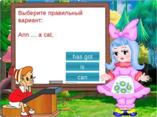 Выберите правильный вариант: Tom has got a … . fox rabbits cats