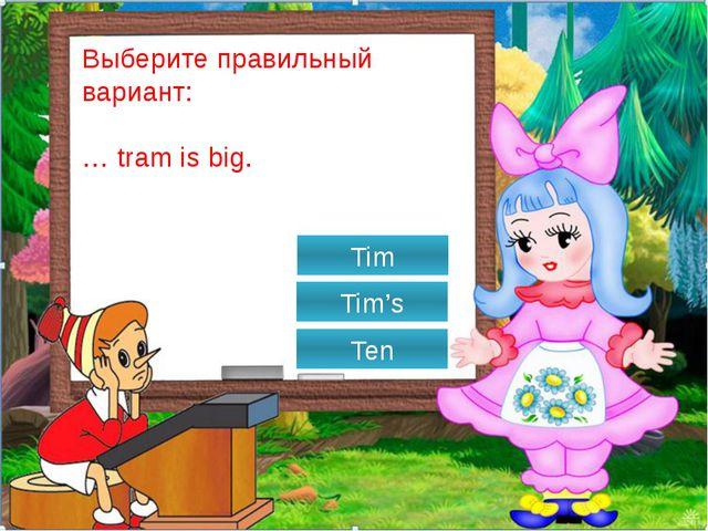 Выберите правильный вариант: … Jim's rabbit? Can It is Is it