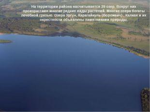 На территории района насчитывается 29 озер. Вокруг них произрастают многие ре
