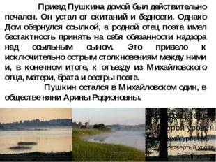 Приезд Пушкина домой был действительно печален. Он устал от скитаний и бедно