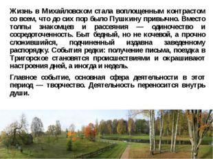 Жизнь в Михайловском стала воплощенным контрастом со всем, что до сих пор был