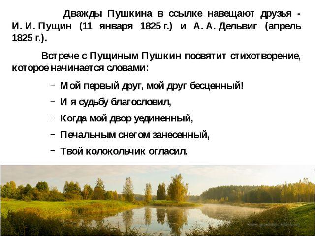 Дважды Пушкина в ссылке навещают друзья - И.И.Пущин (11 января 1825г.) и...
