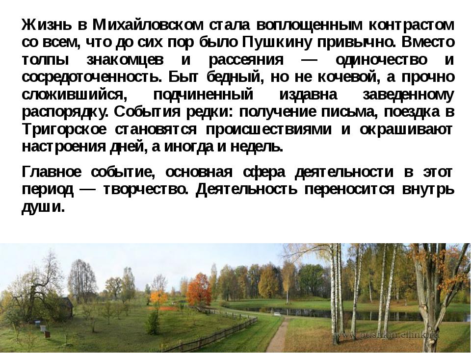 Жизнь в Михайловском стала воплощенным контрастом со всем, что до сих пор был...