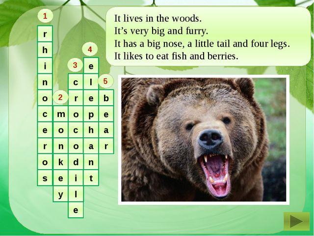 r h i n o c e r o s m o n k e y c r o c o d i l e l e p h a n t b e a r 1 2...