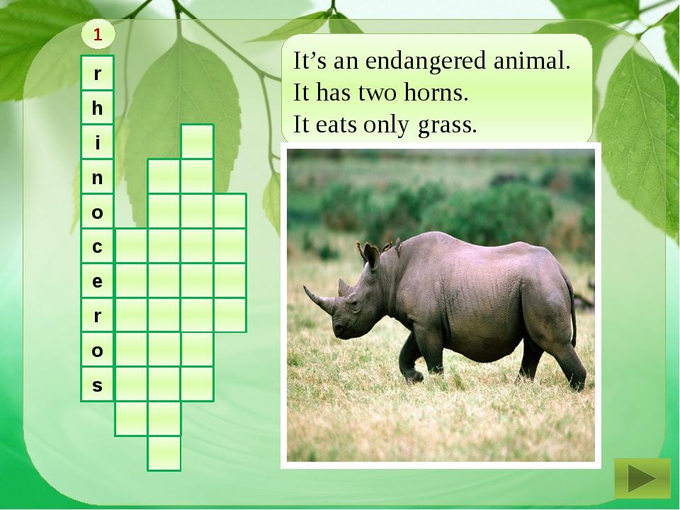r h i n o c e r o s It's an endangered animal. It has two horns. It eats onl...