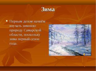 Зима Первым делом начнём изучать зимнюю природу Самарской области, поскольку