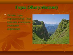 Горы (Жигулёвские) Летние горы хороши собой. Они красивы и покрыты зелёными д