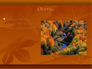 Осень. Рыжая, пёстрая осень! Что может быть прекрасней?!