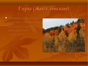 Горы (Жигулёвские) Осенние горы очень красивы. Они похожи на одеяло сшитое из