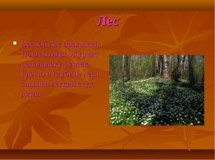 Лес Весной лес прекрасен. Поют птицы. Журчит неподалёку ручеёк. Где-то в глуб