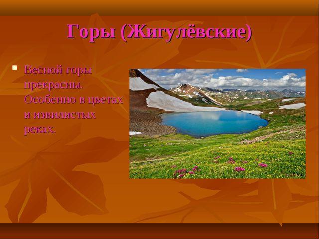 Горы (Жигулёвские) Весной горы прекрасны. Особенно в цветах и извилистых реках.