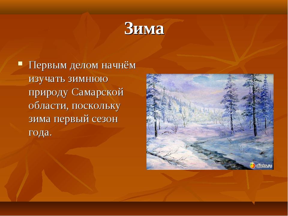 Зима Первым делом начнём изучать зимнюю природу Самарской области, поскольку...
