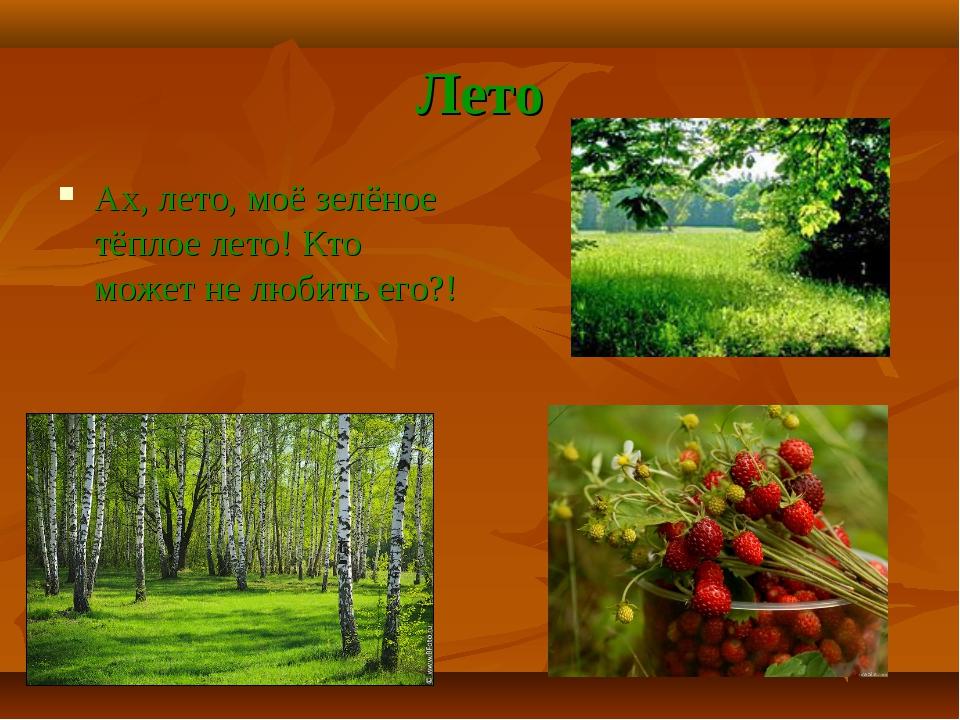 Лето Ах, лето, моё зелёное тёплое лето! Кто может не любить его?!