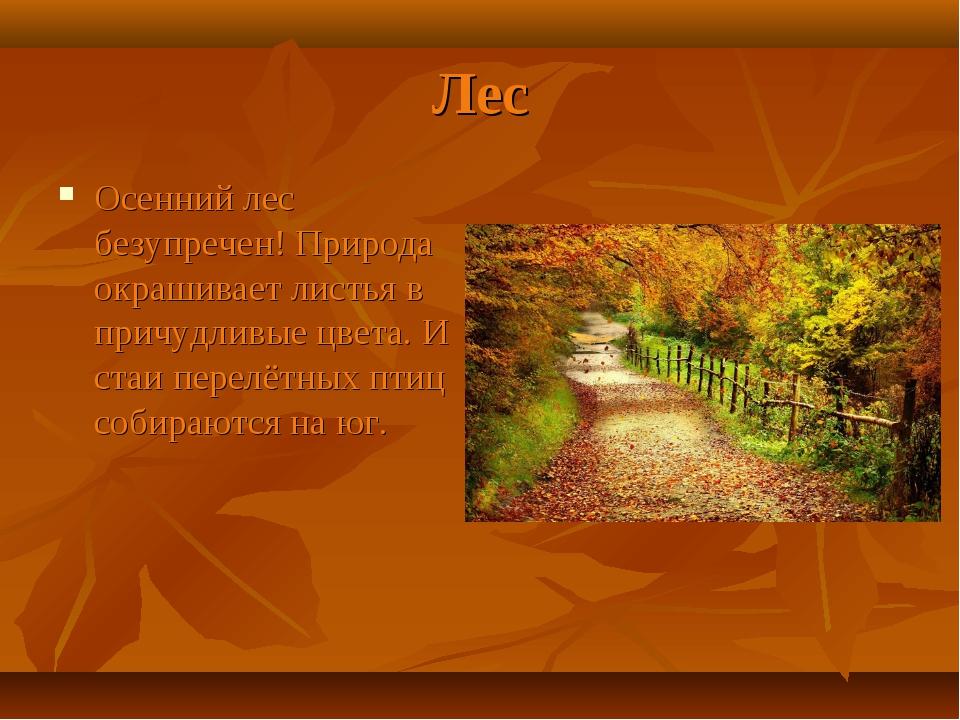 Лес Осенний лес безупречен! Природа окрашивает листья в причудливые цвета. И...