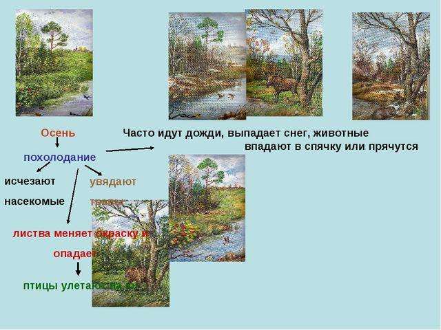 Осень похолодание исчезают насекомые увядают травы листва меняет окраску и оп...